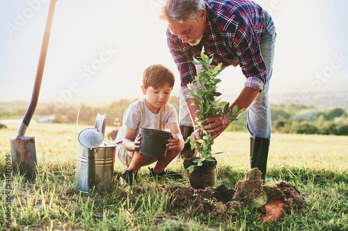 Canvas-taulu Grandfather and grandson planting a tree
