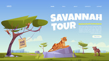 Savannah Tour Cartoon Landing Page, Invitation In National Park With Wild Animals. Tiger, Hyena And Monkey Jungle Inhabitants In Zoo Or Safari Outdoor Area, Vector Web Banner For Booking Tickets
