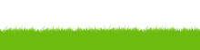 Green Vector Grass Meadow On White Background. Easter Concept: Spring, Easter, Holiday. Vector Illustration EPS 10