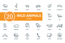 Wild Animals Icon Set. Contains Editable Icons Wild Animals Theme Such As Pigeon, Jaguar, Killer Whale And More.