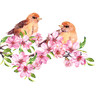 Birds sitting on apple tree branch raster illustration