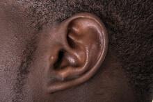 Black Man Ear Close Up. African American Ear Lobe. Hear And Listen Concept.