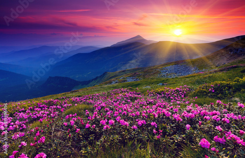 Fototapety, obrazy: sunrise in the mountains