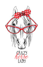 Portrait Of A Elegant Horse In A Red Polka Dot Headband And In A Glasses. Crazy Horse Lady - Lettering Quote. Poster, T-shirt Composition, Handmade Print. Vector Illustration.