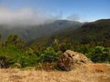 Fototapeta Kamienie - Sucha trawa i kamień na tle góry w obłokach, Madera, Portugalia