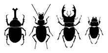 Vector Collection Of 4 Insects Silhouettes.Rhinoceros Beetle, Ground Beetle, Stag Beetle Male, Stag Beetle Female. Minimal Graphic Illustration.