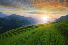 Terraced Rice Fields At Sunset, Mu Cang Chai, Vietnam