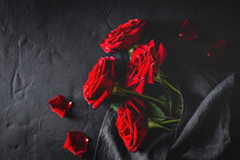 Top View Composition Of Bright Red Blooming Rose Buds And Petals Scattered On Black Surface With Cloth