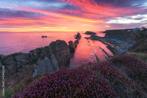 Picturesque coastal scenery of rocky shore with blooming flowers under colorful cloudy sunset sky reflected in calm sea water in summer evening in Valdovino municipality of Spain