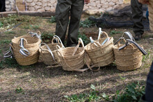 Crop Unrecognizable Farmers Standing Near Wicker Baskets In Yard During Harvesting Season In Countryside On Sunny Day