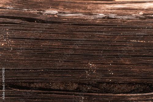 Obraz Zbliżenie na strukturę ciemnego drewna, zniszczone drzewo, piękne tło, tekstura. - fototapety do salonu