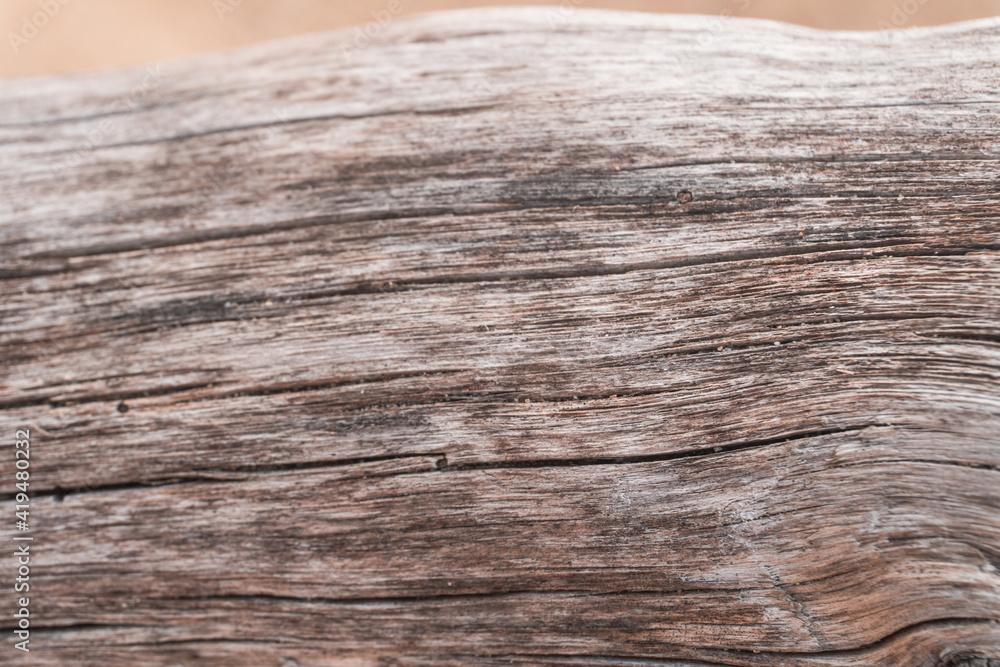 Fototapeta Jasne piękne drewniane tło, tekstura białego drzewa, pnia ze słojami.  - obraz na płótnie