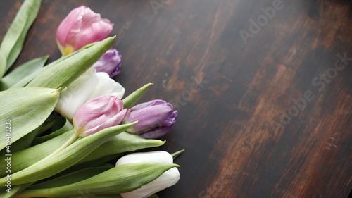 Fototapeta Tulipany kolorowe leżące na blacie drewnianym brązowym ciemnym obraz