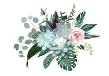 Blush Pink Rose, Blue Echeveria Succulent, Dusty Flowers, Eucalyptus, Calathea