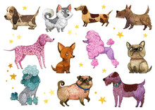 Watercolor Dog Collection, Dog Breeds Clipart. Colorful Cute Dogs In The Cartoon Style.French Bulldog, Dalmatian, Chihuahua, Dachshund, Laika, Cute Pug, Terrier, Poodle Dog.