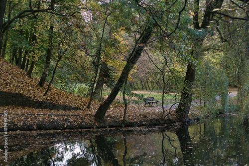 Obraz pusty jesienny park, ścieżka pokryta kolorowymi liśćmi, ławka czeka na spacerowiczów, w stawie odbijają się drzewa - fototapety do salonu