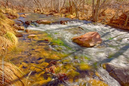 Oak Creek in Red Rock State Park AZ