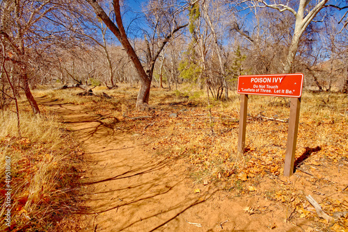 Poison Ivy Warning at Red Rock State Park AZ