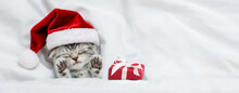 Cute Kitten Wearing Red Santa's Hat Sleeps With Gift Box Under A White Blanket On A Bed. Top Down View. Empty Space For Text
