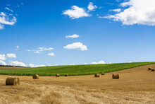 Scenic View Of Straw Bales In The Limagne Plain In France Under A Partly Cloudy Sky Backgroud