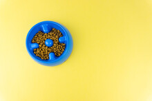 Bowl Of Blue Pet Food On A Yellow Background