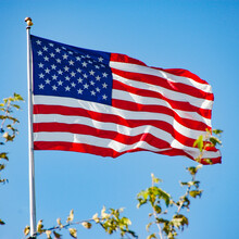 USA Flag Unfurled Blowing In The Wind With A Clear Blue Sky And Soft Foliage In The Foreground