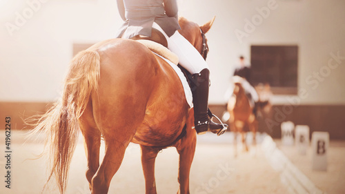 Foto A sorrel fast horse with a long tail and a rider in the saddle participates in dressage competitions in the same arena with a rival, illuminated by sunlight
