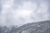 Fototapeta Na sufit - zima las góry śnieg