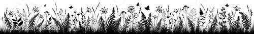Fotografia Background with black silhouettes of meadow wild herbs