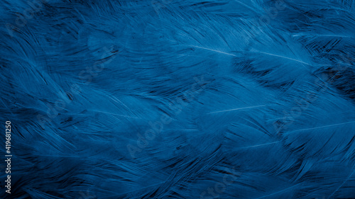 Tablou Canvas macro photo of blue hen feathers. background or textura
