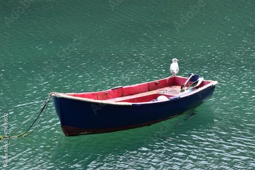 Fototapeta Rot-schwarzes Ruderboot mit Möwe auf grünem Wasser