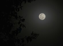 Moon With Moonlight And Shadow