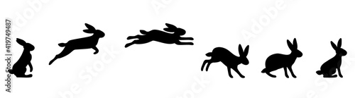 Foto A set of rabbit jump phases