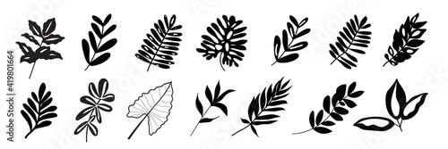 Canvas Print Tropical exotic leaves hand drawn vector set