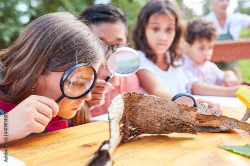 Kinder betrachten Baumrinde durch eine Lupe