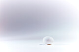 white egg on white