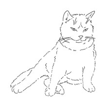 A Drawing Of A Fat, Fluffy, Imposing Cat Sitting Facing Us, Leaning On Its Front Paw. Black And White Linear Isolated Illustration. Linear Style. Stock Vector Image.