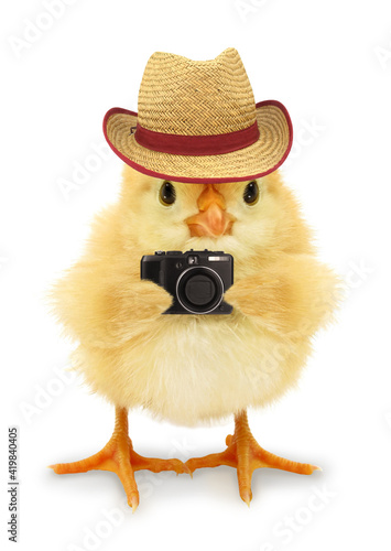 Fotografie, Obraz Cute cool chick tourist photographer traveler with hat and digital camera funny