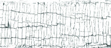 Black And White Monochrome Grunge Pattern. Cool Texture Of Cracks, Stains, Scratches, Splash For Print And Design. Cracked Oil Paint On Wooden Surface. Vector EPS10.