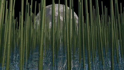 Bamboo trees and nature. 3d illustration