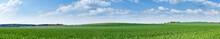 Panorama Of Green Meadow With Blue Sky And Clouds On A Sunny Summer Day