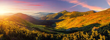 Panorama Landscape Of Carpathian Mountains During Sunset. Scenic Image Of Fantastic Atmosferic Scenery With Picturesque Sky, Mountain Range Under Vivid Sunlit. Amazing Nature Scenery. Creative Image