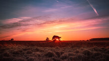 Beautiful Landscape Of The Grassland And The Sunset On The Horizon