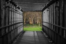 Photo Of The Bridge Overlooking The Park - Art Photo