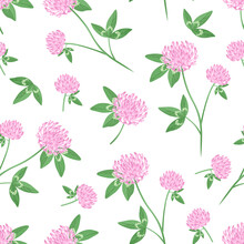 Blooming Clover Seamless Pattern. Botanical Background With Wild Flowers And Green Leaves. Vector Floral Illustration In Cartoon Flat Style.