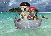A Gray Cat With A Dog Are Floating On A Pirate Washtub Ship Near A Beach Of A Tropical Island.