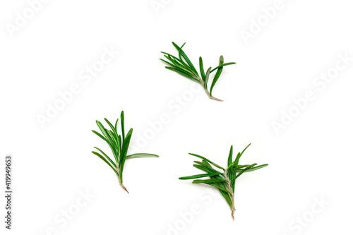 Fototapeta Twigs of rosemary on a white background, organic raw fresh herbs seasoning obraz