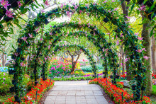 Beautiful Flower Arches With Walkway