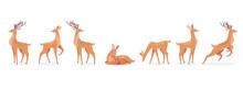 Cartoon Deer Set White Background Illustration