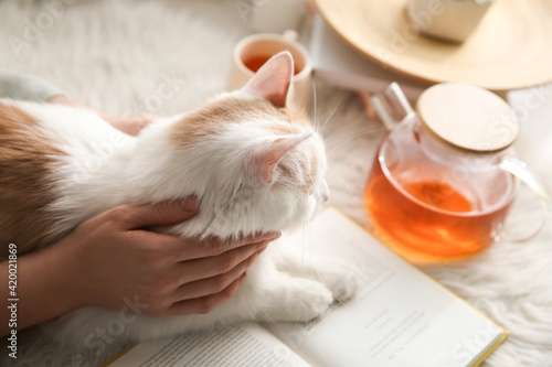 Woman with cute fluffy cat, tea and book on faux fur, closeup Fototapet